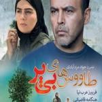 دانلود فیلم سینمایی طاووس های بی پر